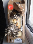 Mushrooms day 6